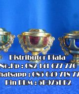 Agen Piala Plastik || Harga Piala Plastik Kecil